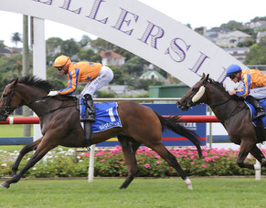 Trelawney grad still on target for Guineas