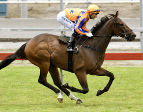 Sword of Osman ready for raceday return