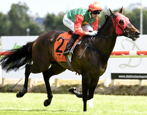 Indecision takes out Te Rapa feature