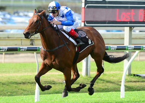 Bostonian flying ahead of Kingsford-Smith