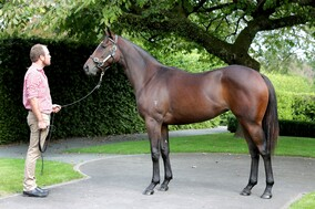 Lot 196 - Exceed and Excel x Lady Sayyida